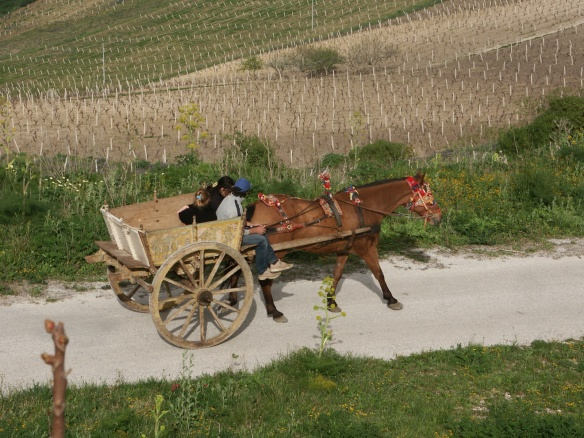 Carretto (Sicilian Buggy)