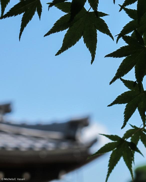 JapanBlogMichi-13