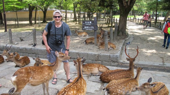 Me and the deers