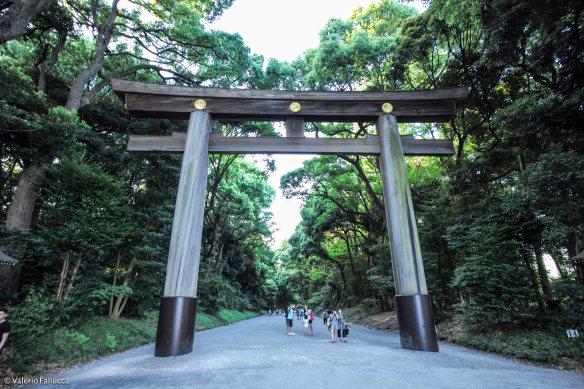 JapanBlogVale-100