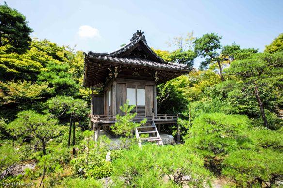 JapanBlogVale-118