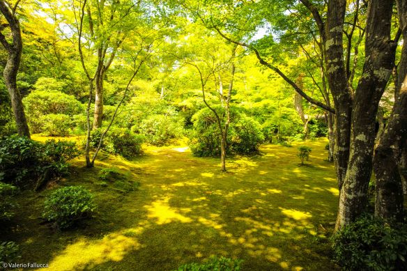 JapanBlogVale-119