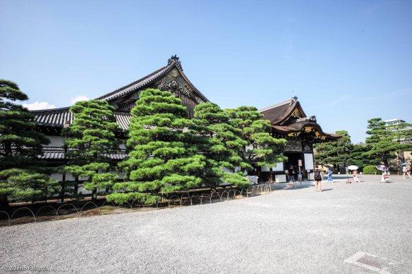 JapanBlogVale-144
