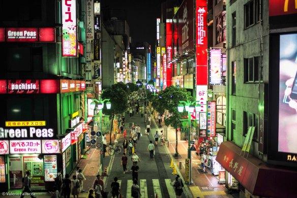 JapanBlogVale-3